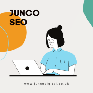 Large SEO Package